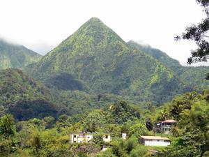Landscapes of Martinique - Regional Park of Martinique: houses in lush greenery at the foot of the Carbet peaks