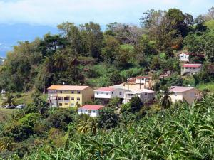 Landscapes of Martinique - Houses surrounded by greenery