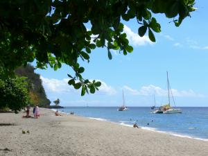 Landscapes of Martinique - Cove Beach Turin and Caribbean Sea dotted with boats; in the town of Carbet