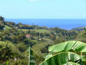 Landscapes of Martinique - Small hill overlooking the Caribbean Sea