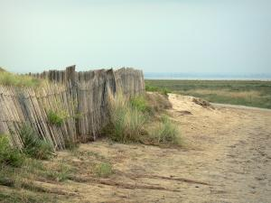 Landscapes of Normandy - Sandy path leading to the Mont-Saint-Michel bay