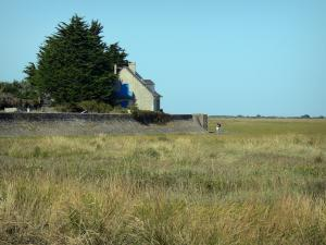 Landscapes of Normandy - House with view of the Veys bay