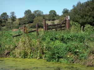 Landscapes of Normandy - Cotentin and Bessin marshes Regional Nature Park: canal, vegetation along the water and trees