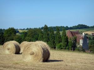 Landscapes of the Orne - Perche Regional Nature Park: haystacks in a field overlooking the Courboyer manor (information center)