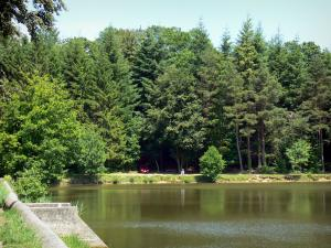 Landscapes of the Orne - Lake surrounded by trees