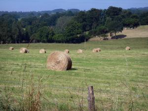 Landscapes of the Orne - Swiss Normandy (Suisse Normande): haystacks in a field overlooking the wooded countryside