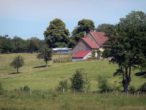 Landscapes of the Orne - Farm surrounded by meadows and trees