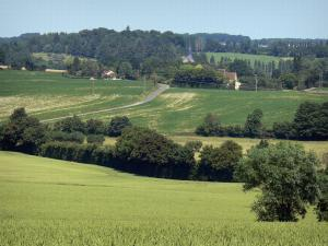 Landscapes of the Orne - Mix of fields and trees