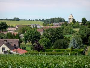 Landscapes of the Orne - Village surrounded by trees and fields