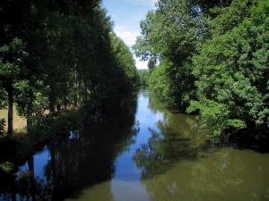 Landscapes of Périgord - Auvézère river lined with trees