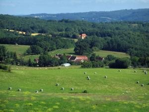 Landscapes of Périgord - Meadow dotted with wild flowers, field with straw bales, houses, trees and forest