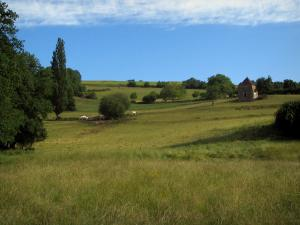Landscapes of Périgord - Meadows, hut and trees