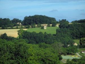 Landscapes of Périgord - Trees and fields