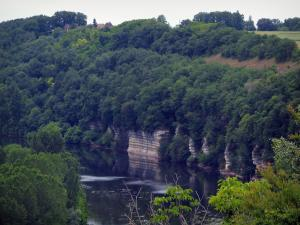 Landscapes of Périgord - Trees by the river