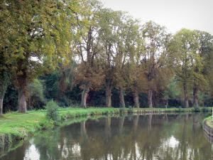 Landscapes of Picardy - The Somme canal, towpath and trees