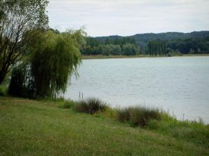 Landscapes of Picardy - Shore, trees and lake