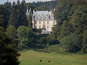 Landscapes of the Puy-de-Dôme - Livradois-Forez Regional Nature Park: château de Job of Renaissance style surrounded by trees and grassland with two cows