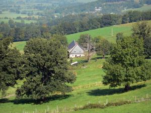 Landscapes of the Puy-de-Dôme - Auvergne Volcanic Regional Nature Park: farmhouse surrounded by trees and pasture
