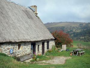 Landscapes of the Puy-de-Dôme - Livradois-Forez Regional Nature Park: stone house with a thatched roof (thatched cottage) overhanging a mountain dotted with trees; in the Forez mountains