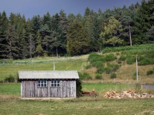 Landscapes of the Puy-de-Dôme - Livradois-Forez Regional Nature Park: log cabin, grassland and forest of pine trees
