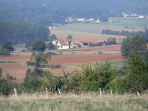 Landscapes of the Puy-de-Dôme - Fields, trees and houses