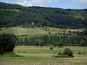 Landscapes of the Quercy - Fields, trees, residence and wood