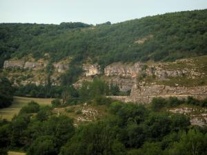 Landscapes of the Quercy - Cliff and trees