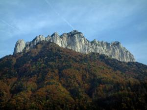 Landscapes of the Savoie in automn - Cliff and forest in autumn