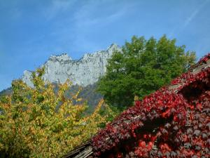 Landscapes of the Savoie in automn - House covered with red ivy (in autumn), trees, forest and cliffs