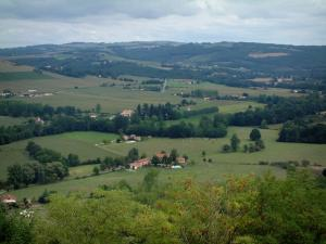Landscapes of the Tarn - From the upper town of Cordes-sur-Ciel, view of trees, meadows, houses, fields and forests