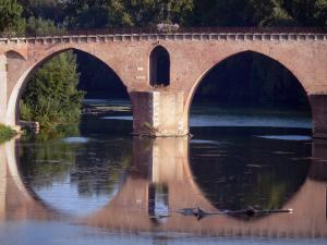 Landscapes of the Tarn-et-Garonne - Montauban: Pont Vieux bridge spanning River Tarn