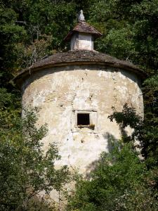 Landscapes of the Tarn-et-Garonne - Dovecote surrounded by trees