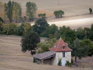 Landscapes of the Tarn-et-Garonne - Dovecote in the fields