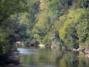 Landscapes of the Tarn-et-Garonne - Aveyron gorges: River Aveyron river lined with trees