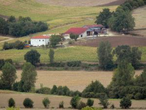 Landscapes of the Tarn-et-Garonne - Farmhouse surrounded by fields and trees