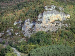 Landscapes of the Tarn-et-Garonne - Aveyron gorges: limestone cliff (rock wall) surrounded by trees
