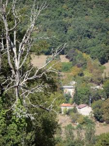 Landscapes of the Tarn-et-Garonne - Houses surrounded by trees
