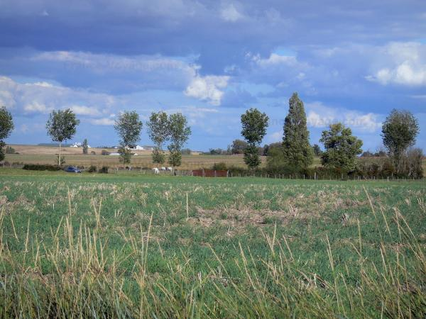 Landscapes of the Vienne - Fields, trees, farm in background, clouds in the sky