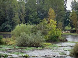 Landscapes of the Vienne - Vienne River, shrubs and trees