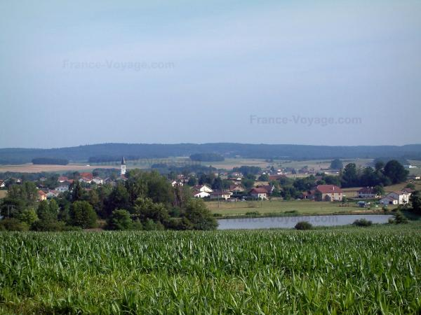 Landscapes of the Vosges - Corn fields, trees, pond, houses of a village and a forest in background
