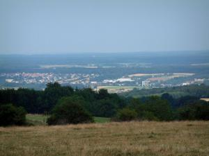 Landscapes of the Vosges - Grassland, trees, city below and forests in background