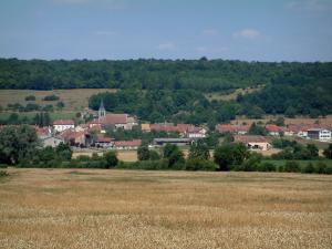 Landscapes of the Vosges - Wheat field, trees, houses of a village and a forest in background
