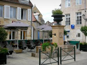 Langres - Fountain, cafe terras en huizen in de oude stad