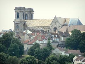 Langres - Saint-Mammès cathedral, houses and ramparts of the old town