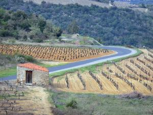 Guide of Languedoc-Roussillon - Tourism, Holidays & Weekends