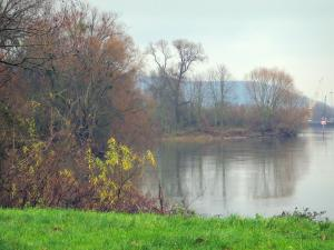 Lanscapes of Normandy - Vegetation, the River Seine and trees, in the Seine valley