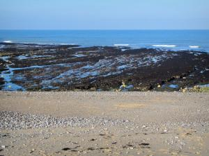 Lanscapes of Normandy - Sandy beach with pebbles, algae and the Channel (sea)