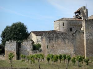 Larressingle - Fortified Romanesque church (Saint-Sigismond church), ramparts (fortifications) of the medieval village and vines