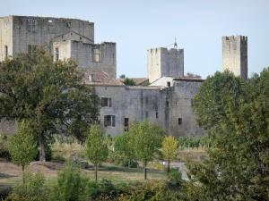 Larressingle - Keep-castle, houses and crenellated towers of the medieval fortified village, trees and vines