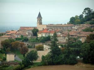 Lautrec - Trees, Saint-Rémy collegiate church and houses in the medieval village